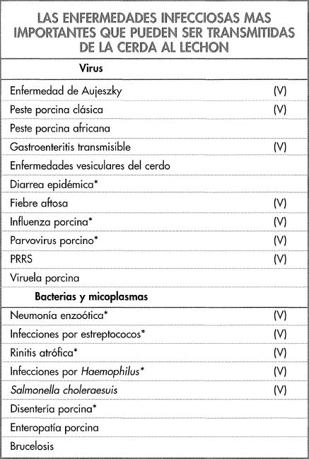 ldentificación de los problemas en el lechón - Manejo sanitario y ...
